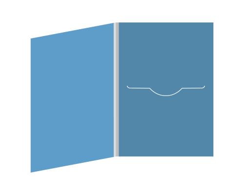 DigiFile DVD 4 полосы 1 прорезь (справа)