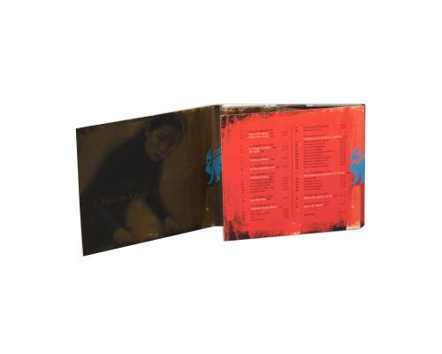 Диджипак CD 6 полос 1 трей. Terre de chine