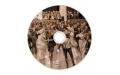 Печать на CD-R дисках (Цифровая)