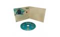 """Диджификс CD 4 полосы 1 спайдер (справа), Держи курс на """"ОКЕАН"""""""